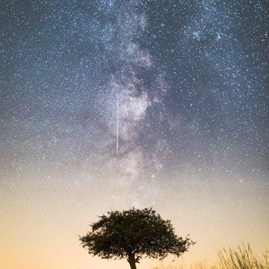 Csillagles a Balatonnál