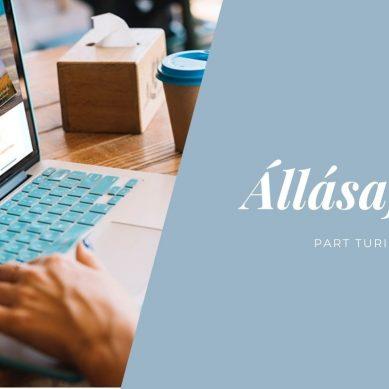 Projektvezető | Álláshirdetés